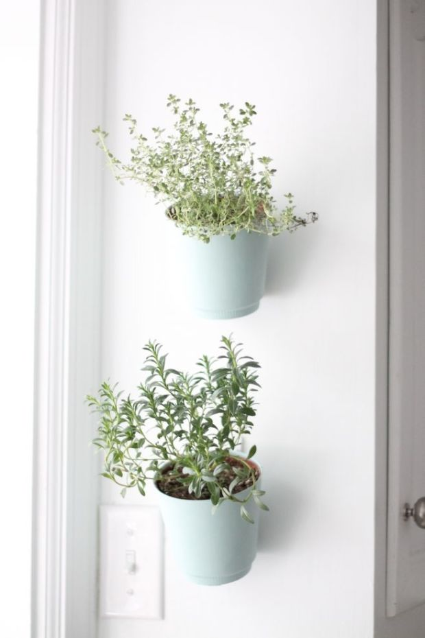 hanging-planters