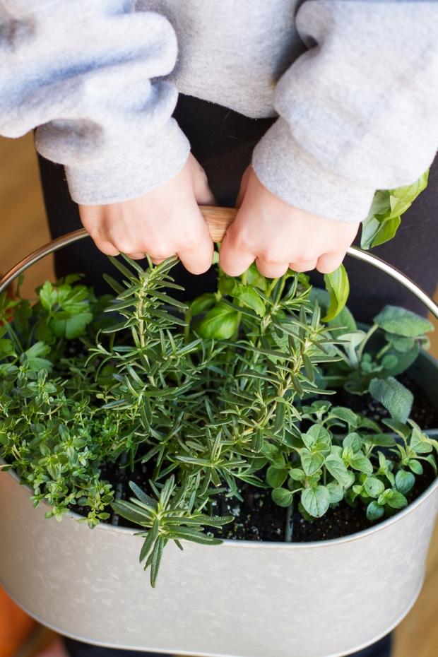 utensil-holder-herb-garden