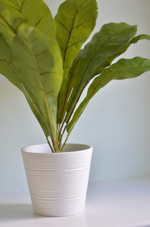 DIY Faux House Plant | Minted Bold